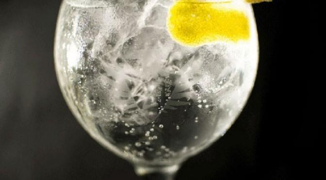 Gin con Limón