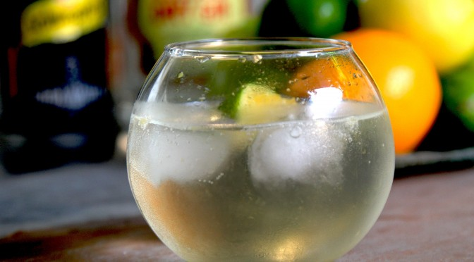 Make-Gin-and-Tonic-Step-10