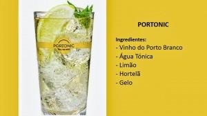 Portonic (1)